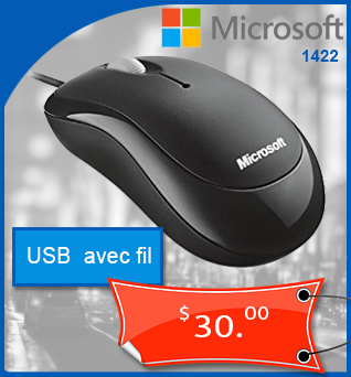 Mice-Souris-Microsoft-Model-1422-30cad-fr