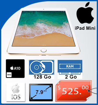Tablet-iPad-Mini-7_9in-128GB-2GB-iOS9-525cad-fr