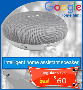 Google-Home-Mini-60cad-en